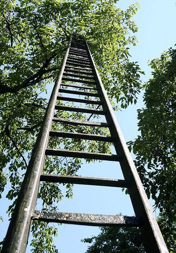 Climb Higher resized 600