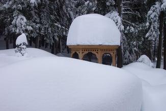 Winter 2001-4